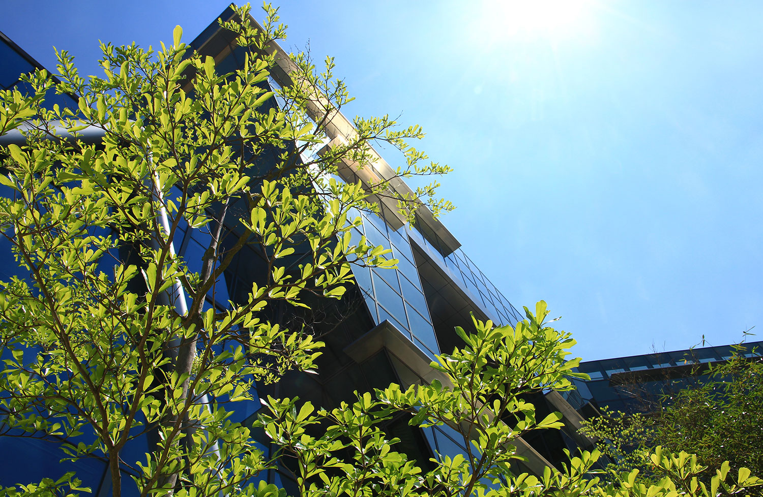The increasing demand for zero carbon buildings